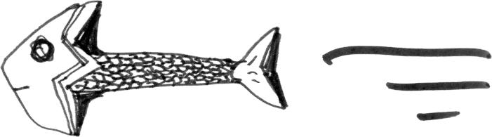 Fishtail Studio